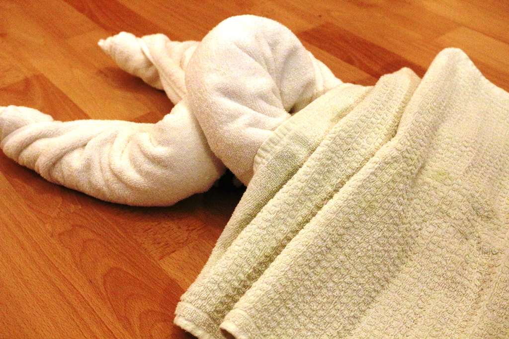 Hummer-handtuch-falten-12