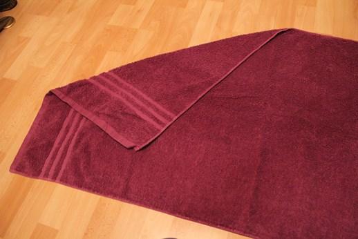 Bekannt Einen Schwan aus Handtüchern falten | Handtücher falten LN39