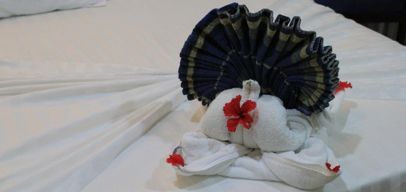 erlernen Sie die Kunst des Handtuch Origami
